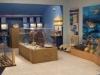 helmis museum zante03