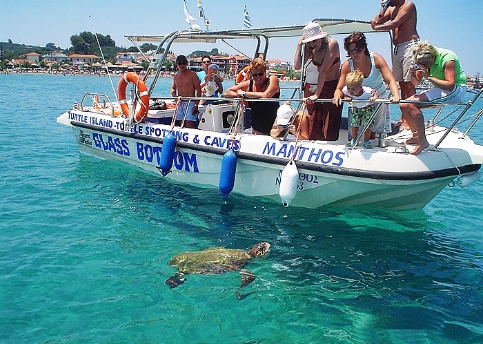 turtle-spotting-zante-herodotos-tours