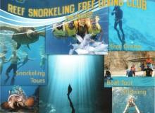Snorkeling Free Diving Club